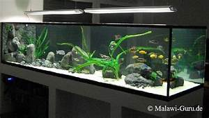 Aquarium Als Raumteiler : malawi malawi becken als raumteiler ~ Michelbontemps.com Haus und Dekorationen