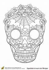 Coloring Pages Skull Sugar Adult Flower Skulls Spider Dead Printable Hugolescargot Halloween Sur Flowers Sheets Azcoloring Mandala Webs Colouring Squelette sketch template