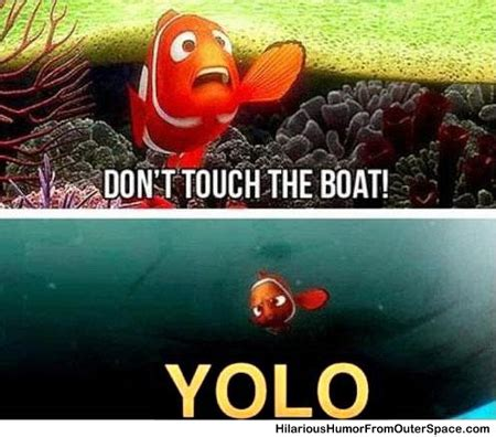 Nemo Meme - finding nemo yolo meme memes gifs and funny stuff good for the kids pinterest yolo
