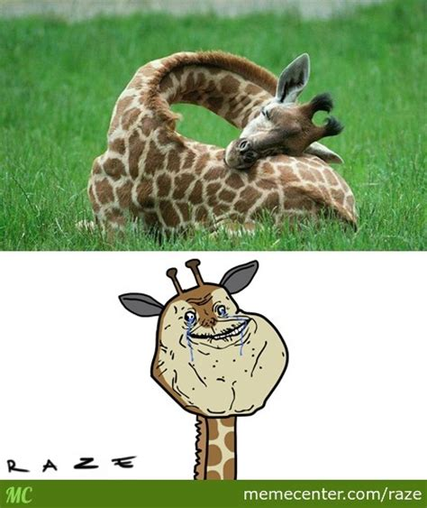 Meme Giraffe - funny giraffe meme www pixshark com images galleries with a bite