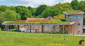 Extensive Dachbegrünung Pflanzen : extensive dachbegr nungen zinco ~ Frokenaadalensverden.com Haus und Dekorationen