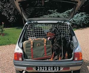 Protection Chien Voiture : filet de protection chien pour voiture khenghua ~ Dallasstarsshop.com Idées de Décoration
