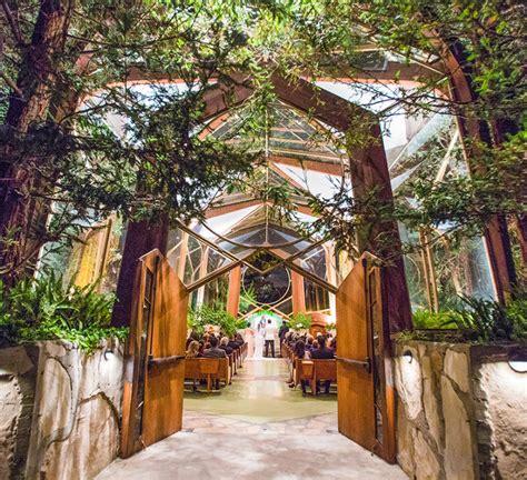 Enchanted Forest Wedding Ideas Wedding Decor Ideas
