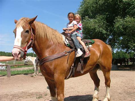 kid friendly places  horseback riding  chicago