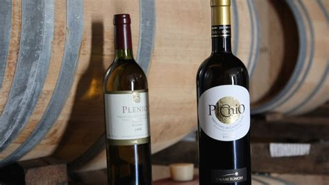 Best Italian Wines by Plenio 2012 Is One Of The Best Italian Wines By Wine