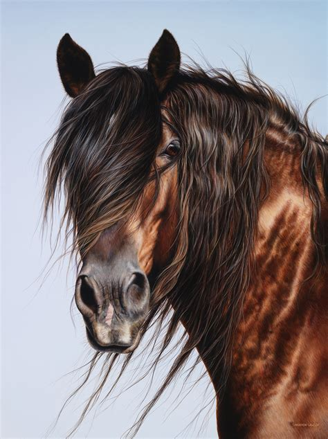 equine art  shannon lawlor commissioned horse portraits