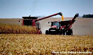 Illinois Corn: What Can You Expect for Gross Revenue ...