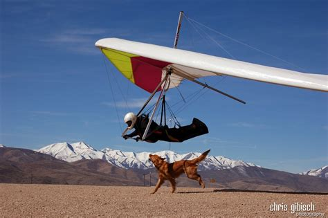 Hang Gliding - Pictures, posters, news and videos on your ...