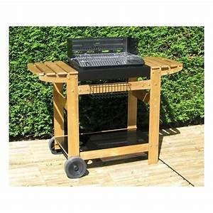 Barbecue Gaz Et Charbon : barbecue charbon de bois ~ Dailycaller-alerts.com Idées de Décoration