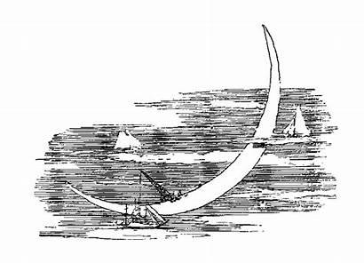 Moon Digital Crescent Stamps Illustrations Stamp