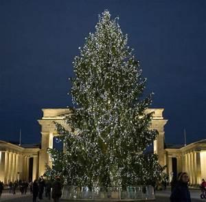 Weihnachtsbaum Entsorgen Berlin : th ringen liefert weihnachtsbaum vor brandenburger tor welt ~ Lizthompson.info Haus und Dekorationen