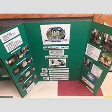 2019 Science Fair  Mcginnis Woods Country Day School