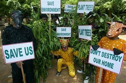 Environment Environmental Save Earth Poster Children Education
