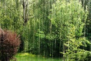 Résultat d'images pour la pluie en été
