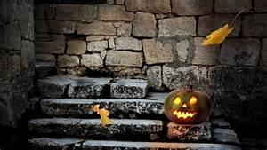 Woher Kommt Halloween : halloween woher kommt dieser brauch eigentlich ~ A.2002-acura-tl-radio.info Haus und Dekorationen