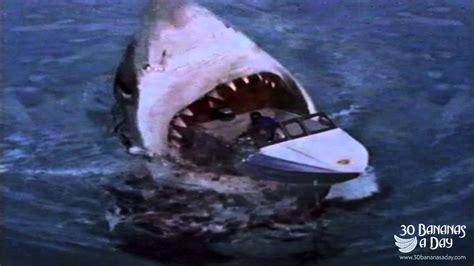 megalodon shark biggest fish boat attack attacks florida fishing tourist fake australia game wiki sydney