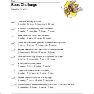 bees wordsearch vocabulary crossword