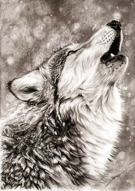 realistic animal pencil drawings