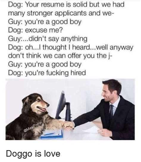 We Can T Parse Your Resume by 25 Best Memes About Doggo Doggo Memes