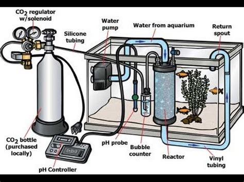 Pressurized Co2 Setup for Planted Aquarium - YouTube