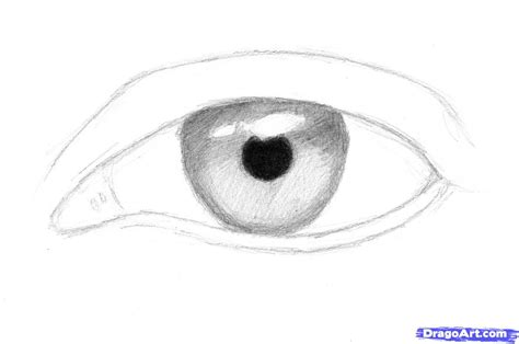 easy pencil sketch drawings pencil drawing collection