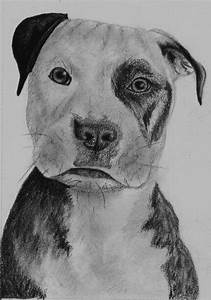 Puppy Pencil Drawing by elissaevans on DeviantArt