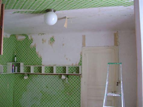 papier peint au plafond papier peint au plafond photo de quot chambre verte quot la grande migration