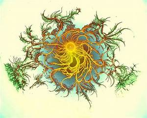Growing Bacteria Make Psychedelic Art - Neatorama