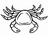Crab Coloring Pages Printable Crabs sketch template