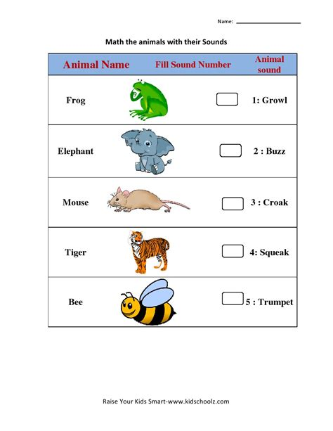 outstanding worksheet turtle diary learning worksheets