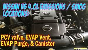 Nissan 4 0l V6 Vq40de Emissions Locations  Pcv  Evap Syst
