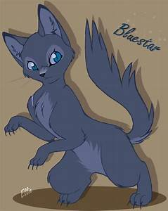 Warrior Cats Blue Star - Pics about space