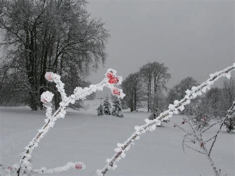 Mehr Kompetenz Fuer Frische Luft by 5 Tipps F 252 R Mehr Energie Im Winter Mamiweb De