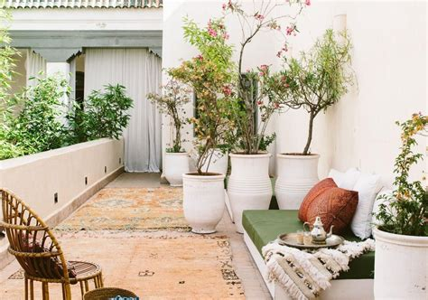 des plantes sur ma terrasse  idees faciles  copier