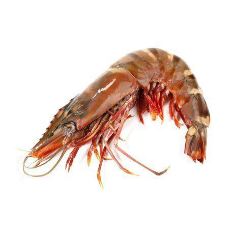 cuisiner gambas crues colis gambas crevettes crues congelés poisson frais en ligne