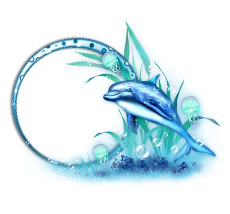 forgetmenot frames dolphins