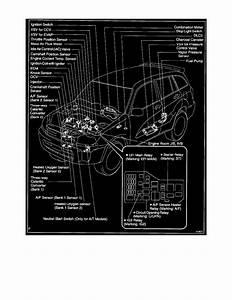Toyota Rav4 O2 Sensor Wiring Diagram