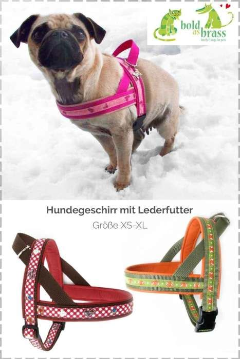 naehen fuer hunde archive farbenmix