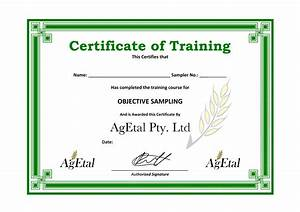 certificate of awesomeness template - training certificate template word