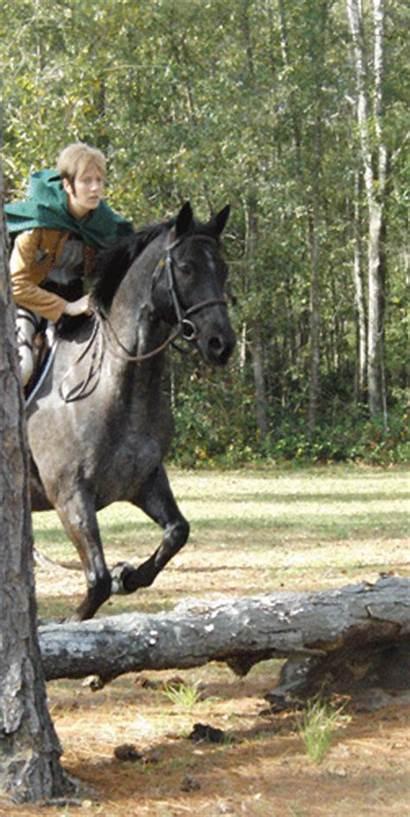 Jean Horses Titan Attack Cosplay Snk Riding
