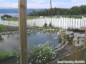 construire un bassin de jardin ou etang de jardin With plan de bassin de jardin