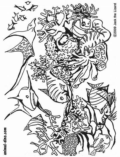 Coloring Ocean Sea Pages Printable Under Adults