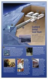Food Futures  Arctic Seed Vault Adds 100 000 New Varieties