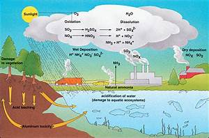 Option E: Environmental Chemistry Group 1 | Just another ...
