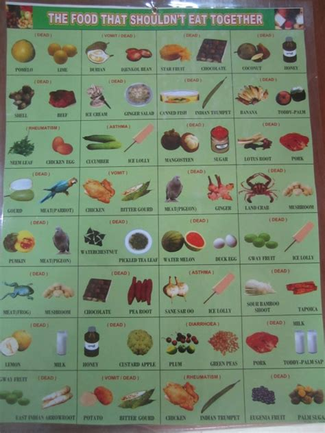 Next Wool Rug by Food You Shouldn T Eat Together Really Funny Pictures