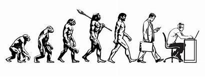 Evolution Evoluzione Uomo Theory Dell Menschen Darwin