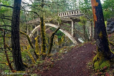 Prospect, Oregon | Pretty places, Oregon, Adventure