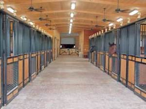 help your horse keep a short hair coat in the winter dec With barn stall lights