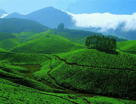 best tourist spot of valparai luxury hotels in india kerala tourist attractions top 5