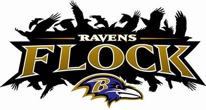 Ravens Baltimore Raven Transparent Flock Nfl Football